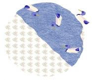 Azulones y madreselvas