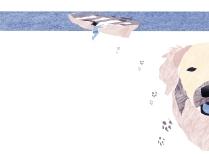 Barquita y huellas